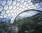 Eden Project, Bodelva, St Austell, Cornwall -Tropical biome - 9895-110-1