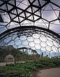 Eden Project, Bodelva, St Austell, Cornwall - Interior view of temperate biome - 10212-70-1