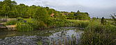 Garden, with wildlife pond, Lincolnshire - 12343-10-1