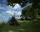 Wigwam of sticks in rural garden Lincolnshire - 12343-160-1