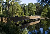 Sackler Crossing, Kew Gardens, London - 12656-650-1