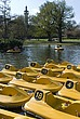 Pedaloes in the pond, Regent's Park, London - 12656-960-1