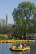 Pedaloes in the pond, Regent's Park, London NW1 - 12656-970-1