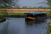 Tourist boat sailing past the flower fields at Keukenhof Gardens, near Leiden - 12679-50-1