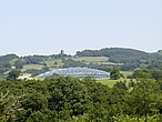 The Great Glasshouse, National Botanic Garden of Wales, Llanarthne - 50008-20-1