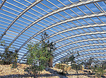 The Great Glasshouse, National Botanic Garden of Wales, Llanarthne - 50008-50-1