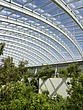 The Great Glasshouse, National Botanic Garden of Wales, Llanarthne - 50008-60-1