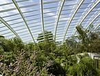 The Great Glasshouse, National Botanic Garden of Wales, Llanarthne - 50008-70-1