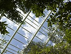 The Great Glasshouse, National Botanic Garden of Wales, Llanarthne - 50008-80-1