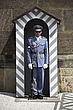 A city guard stands in a century box, the 19th century castle in Prague,  where the Czech crown jewels are kept, Czech Rebublic  - 12885-60-1