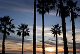 Sunset, Santa Monica beach - 12983-1010-1