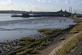 Mud flats on The River Thames - 12983-1140-1