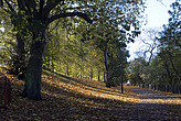 Autumn in Battersea Park - 12983-60-1