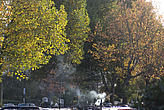Canal boats and Autumn colours, Little Venice - 12983-730-1