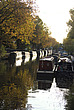 Canal boats and Autumn colours, Little Venice - 12983-750-1