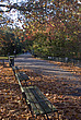 Autumn in Battersea Park - 12983-80-1