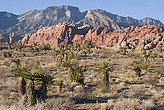 Red Rock National Conservation Area, Las Vegas - 12983-850-1
