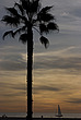 Sunset, Santa Monica beach - 12983-990-1
