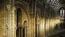 Sunlight on terracotta tiles columns and arches, Natural History Museum, London - 13157-30-1