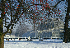Royal Botanic gardens Kew - Palm House - Tropical Plant House in snow built 1848 - 27-10-1