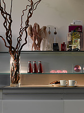 Willow branches and coffee in apartment of Paxton House, London, UK - 11655-250-1