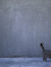 Grey cats tail and a grey concrete wall - 14256-130-1
