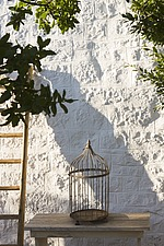 Empty birdcage on table and ladder against stone wall with tree casting shadow - 16440-520-1