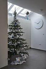 Interior view of residential building, Christmas Tree in entrance hall - 16753-20-1