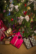 Christmas presents under tree in Chichester home, England, UK - 14877-190-1