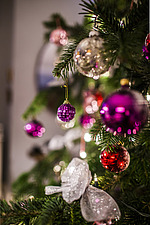 Christmas decorations hang on tree in Chichester home, England, UK - 14877-40-1