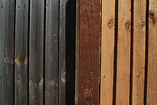 Close up of close-boarded fence panels - 10639-160-1