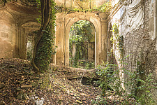 an abandoned villa that is in ruins where a tree is taking over the main room - ARC101499
