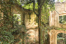 an abandoned villa that is in ruins where a tree is taking over the main room - ARC101501