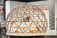 Forest of Fabrication is an exhibition by the Stirling Prize-winning practice dRMM Architects at The Building Centre, London presenting engineered tim... - ARC106860