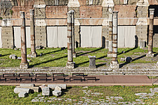 Roman columns at the Forum in Rome, Italy - ARC106983