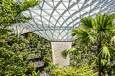 The Jewel Changi Airport in Singapore, a mixed use development complex featuring a rain vortex, the largest indoor waterfall in the world in 2019 - ARC107949