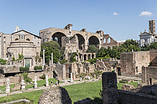 Basilica of Maxentius in the background of this scene from the Roman Forum in Rome, Italy - ARC109918